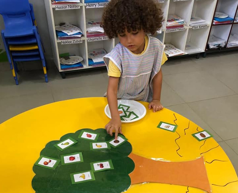 Where Food Grows- Kg1 and Kg2
